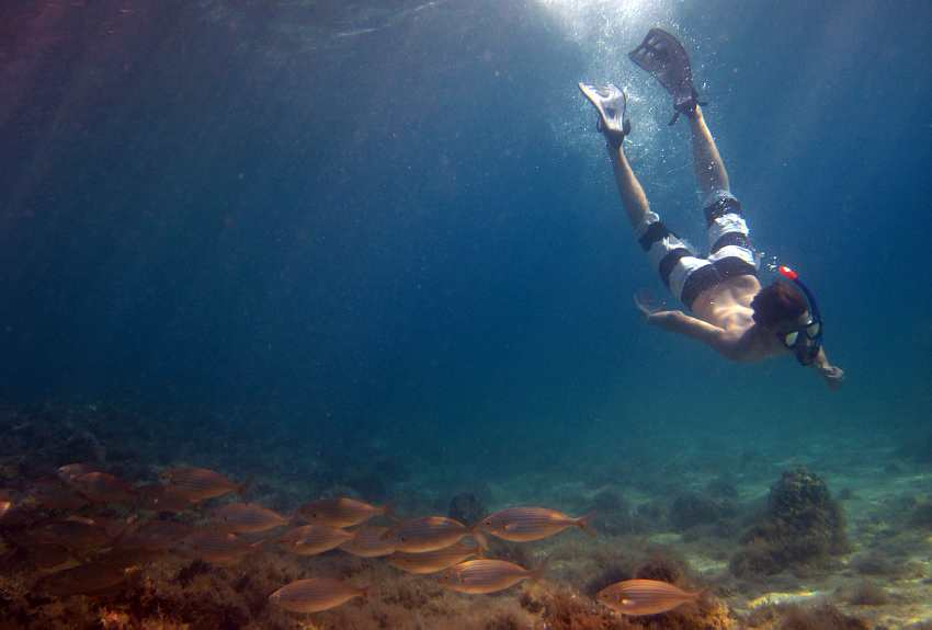 diving Adriatic