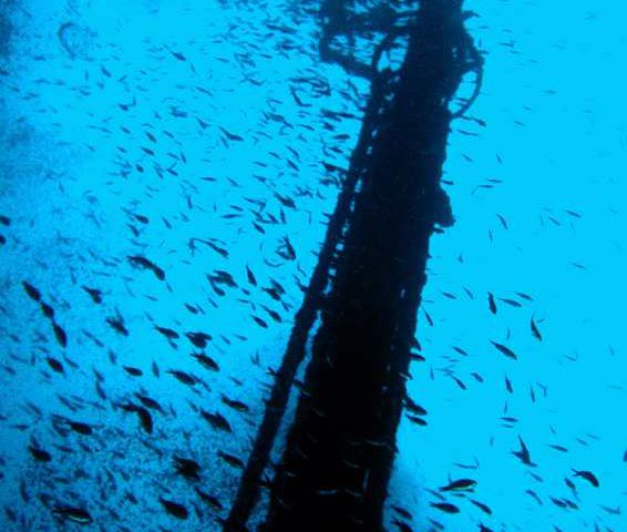 Visit the Sunken Ship in Rijeka