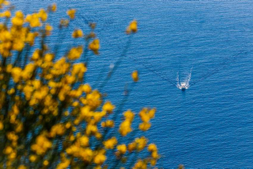 Arriving to the Shorelines of Adriatic