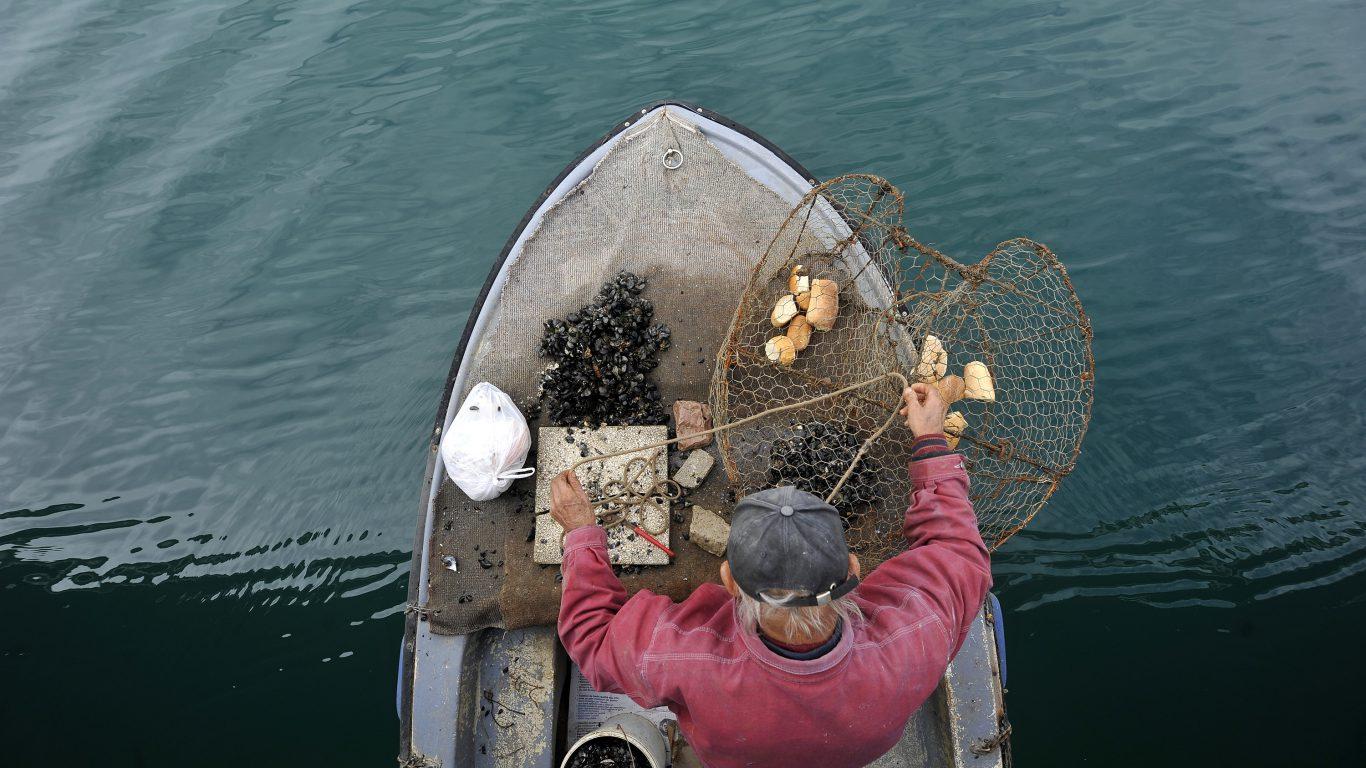 Zadar Moments: A Fisherman Prepares