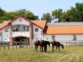 The romantic ranch of Visnjica