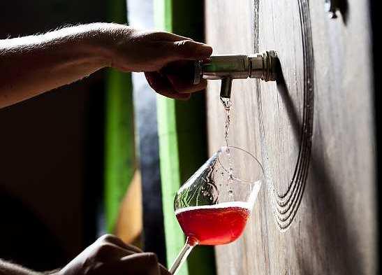 Croatian, wine, glass, cellar