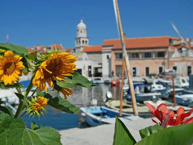 What is Dalmatia?