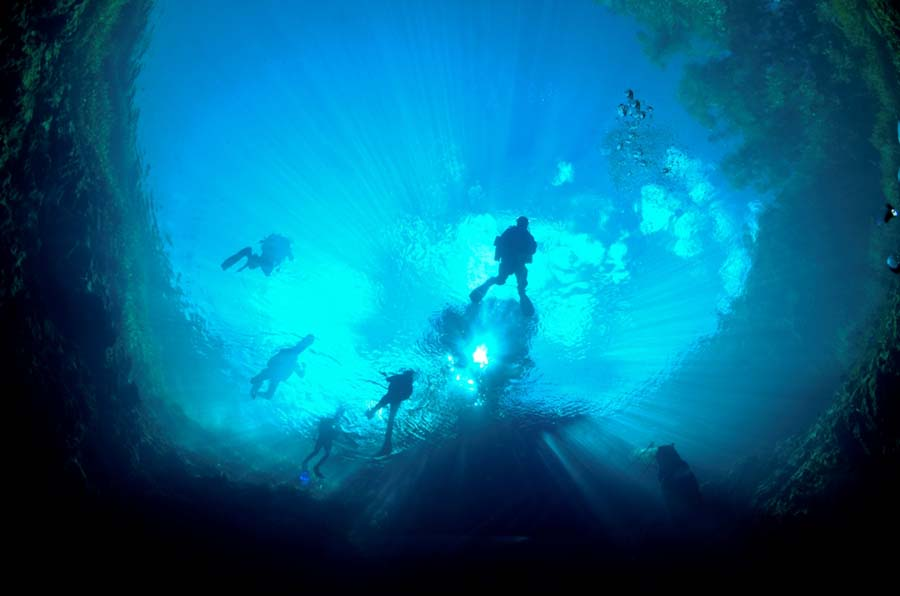 Adriatic Depths, Underwater (14)