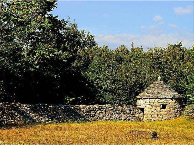 Lovely Istrian Landscape