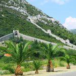 Petr Dandy Reeh Ston Walls