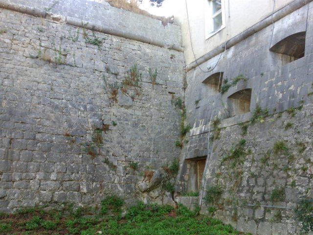 Exploring the Secrets of Gripe Fort